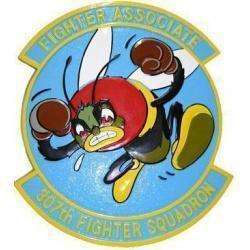 307th Fighter Squadron Patch