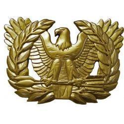 US Navy Warrant Officer Badge