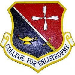 college for enlisted professional military education pme crest plaque