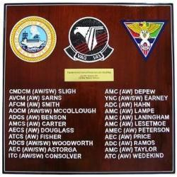 electronic attack squadron 141 navy deployment  plaque