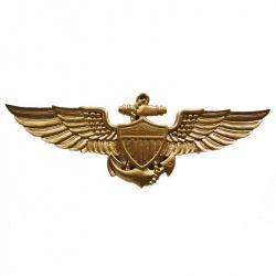 wings insignia badge military plaque