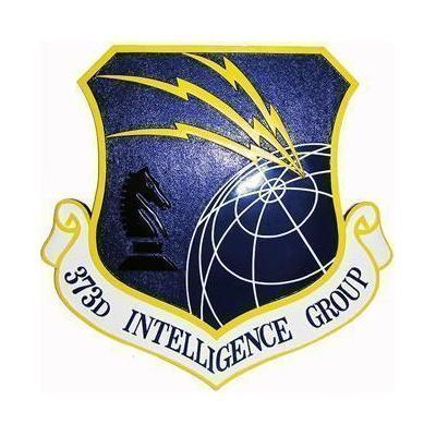 373D Intelligence Group