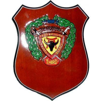 3d Battalion 4th Marines Patch Plaque