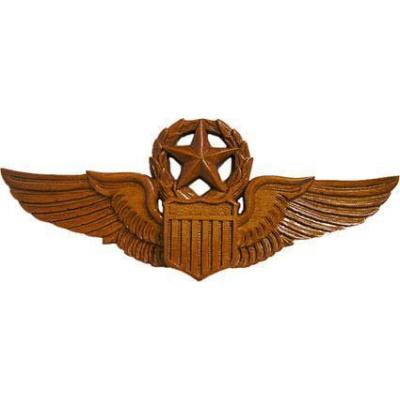 Aviator Wings Master