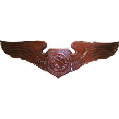 USAF Air Battle Manager Wings